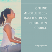 8-Week Online Mindfulness Based Stress Reduction Course