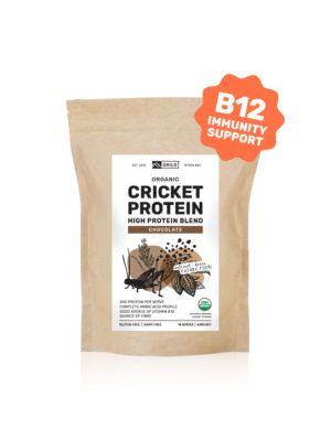 Grilo Organic Cricket Protein Powder | Chocolate 434g