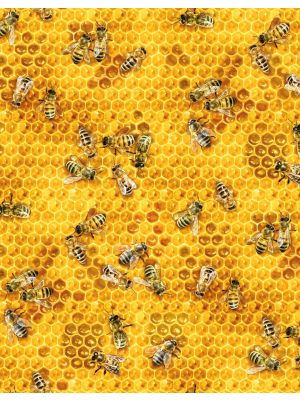 Beeswax Wraps - Choose Your Prints - Bees & Honey
