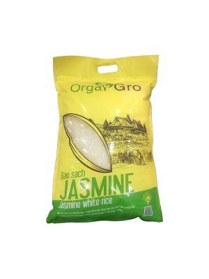 JASMINE CLEAN RICE (5KG)
