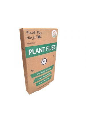 Plant Fly Ninja