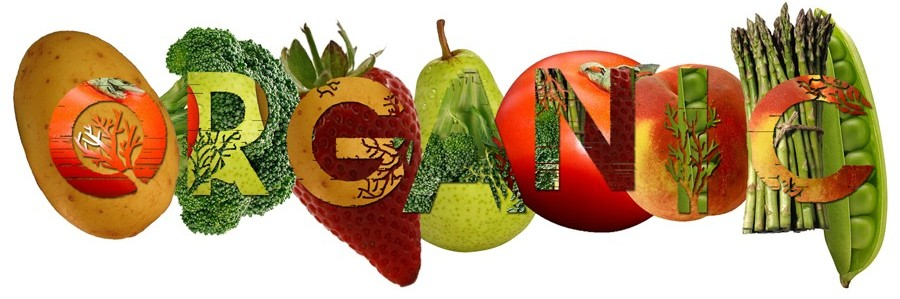 Organic Food – 7 Reasons Why They are Good for You