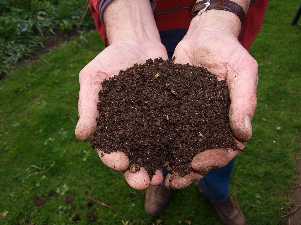 A Simple and Quick Guide to Composting at Home