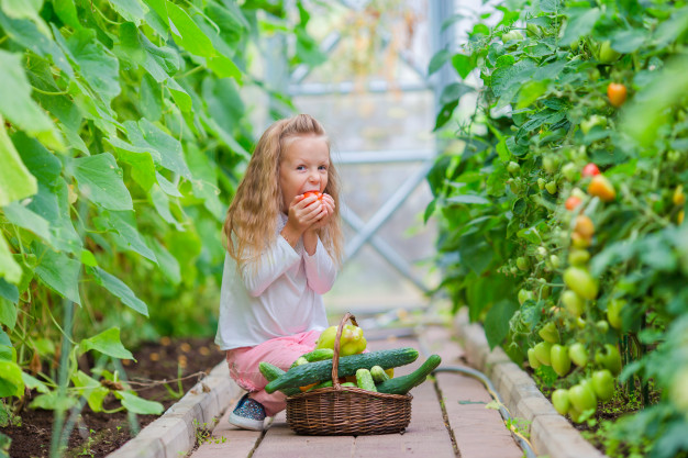 7 Ways to Get Your Kids to Eat Healthy Food